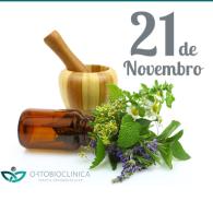 Orto_21-11-14_Site